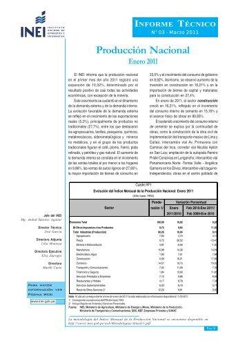 Informe Técnico - Inei