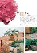 red sandstone - Sandstein * Hartsandstein für Haus und Garten ... - Seite 6