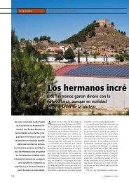 Los hermanos incré dulos - PHOTON - La Revista de Fotovoltaica ...