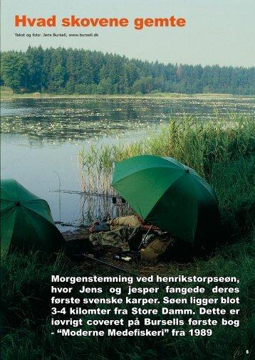 Read article (pdf - 1587 KB) - Jens Bursell