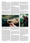 Read article (pdf - 1587 KB) - Jens Bursell - Page 5