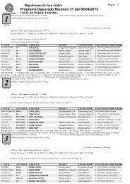 Programa Depurado Reunion 31 del 06/04/2013 - Hipodromo de ...