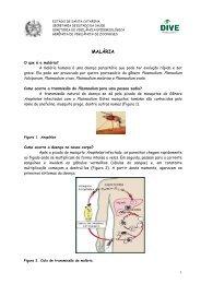 Malária - Para população - Diretoria de Vigilância Epidemiológica