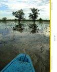 O Amapá - Conservação Internacional - Page 7