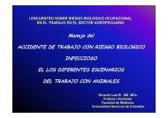 Manejo del ACCIDENTE DE TRABAJO CON RIESGO BIOLOGICO ...