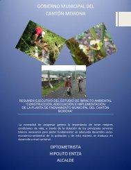 Resumen Ejecutivo del Estudio - Municipalidad de Macas