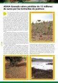 El MARM elabora el programa de ayudas a los cultivos herbáceos - Page 4