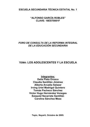 tema: los adolescentes y la escuela - Reforma de la Educación ...