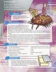Secundaria - Conacyt - Page 7