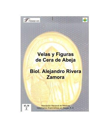 Manual para la Elaboración de Velas y Figuras de Cera ... - Sagarpa
