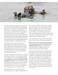 Sea Otters and Kelp Forests - Alaska Wildlife Alliance - Page 2