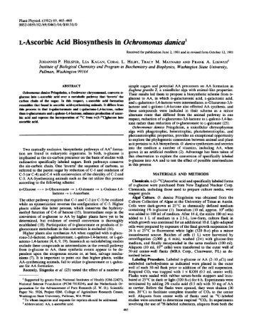 L-Ascorbic Acid Biosynthesis in Ochromonas ... - Plant Physiology