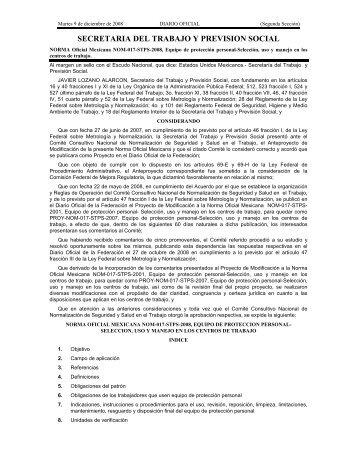 NOM-017-STPS-2008 - Normas Oficiales Mexicanas de Seguridad y ...