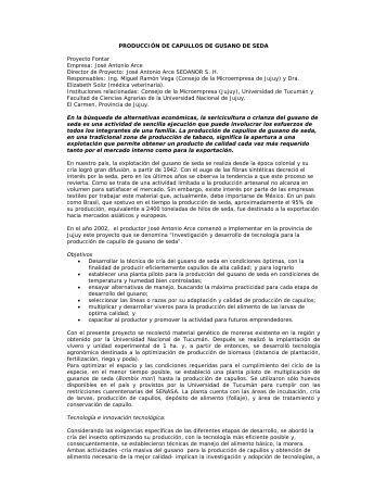 PRODUCCIÓN DE CAPULLOS DE GUSANO DE ... - Agroinnova