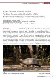 Testing the cognitive flexibility of the Red Footed tortoise