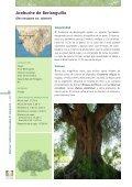 DOC CADIZ.qxp - Junta de Andalucía - Page 2