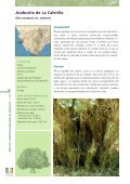 DOC CADIZ.qxp - Junta de Andalucía - Page 6