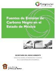 Fuentes de Emisión de Carbono Negro en el Estado de México
