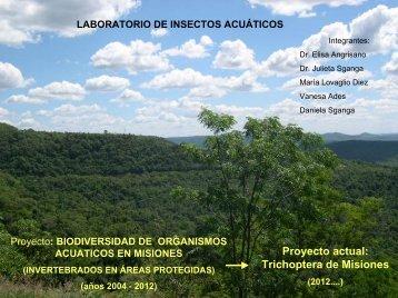 Laboratorio de Insectos Acuáticos - Departamento de Biodiversidad ...