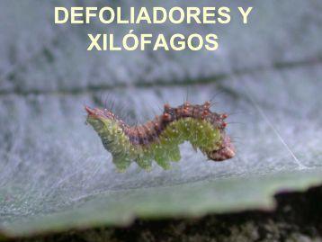 DEFOLIADORES - Embrapa
