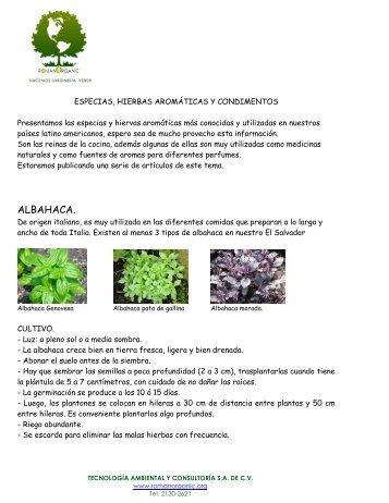 ALBAHACA. - Tecnología Ambiental & Consultoria SA de CV