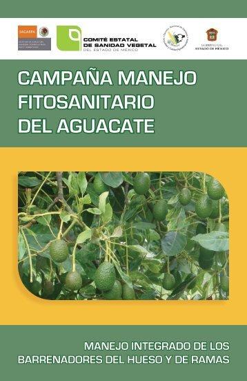 campaña manejo fitosanitario del aguacate - Cesavem.org