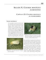 Control biológico en invernaderos - Avocadosource.com