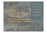 06 MTP em Rios Altamente Barrados.pdf - Portal Conselhos MG