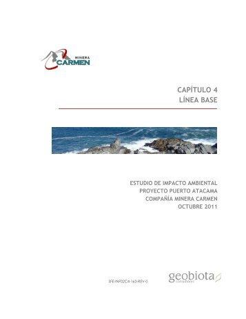 CAPÍTULO 4 LÍNEA BASE - SEA - Servicio de evaluación ambiental