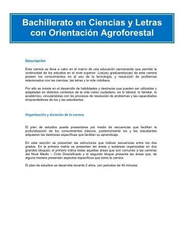 Bachillerato en Ciencias y Letras con Orientación Agroforestal