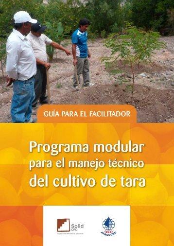 Guia para el facilitador FINAL - Solid Perú