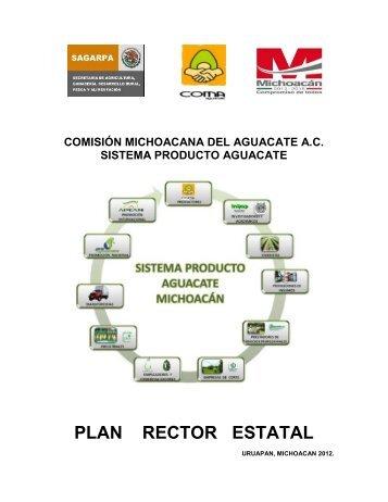 Aguacate - Campo Mexicano