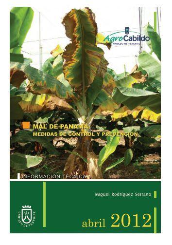 MAL DE PANAMÁ: MAL DE PANAMÁ: - AgroCabildo