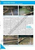UN OFICIO ENTRAÑABLE, NATURAL Y SELECTIVO UN OFICIO ... - Page 3
