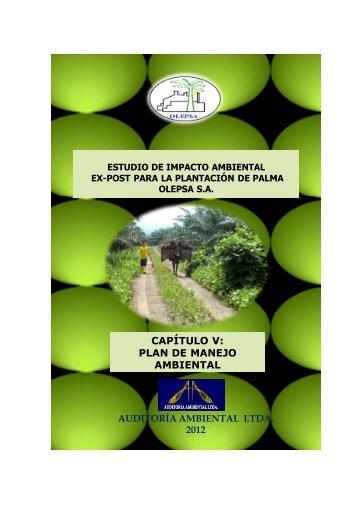 capítulo v: plan de manejo ambiental - Ministerio del Ambiente