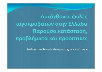 Indigenous breeds sheep and goats in Greece - SAVE Foundation