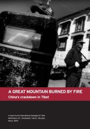 A Great Mountain Burned by Fire - International Campaign for Tibet
