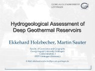 Hydrogeological Assessment of Deep Geothermal Reservoirs