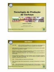 Tecnologia de Produção de Cachaça - Conselho Regional de ...