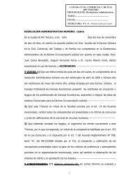 Resolucion Rio Tercero - Orden de Merito - Consejo Profesional de ...