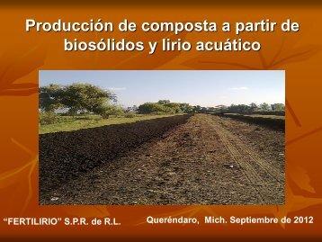 Producción de composta a partir de biosólidos y lirio acuático