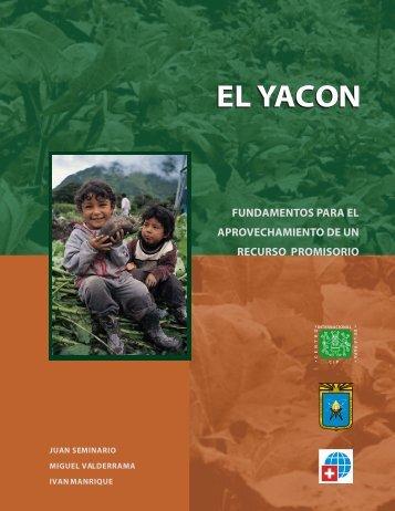 El Yacon Fundamentos para el Aprovechamiento de un Recurso ...