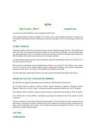 Soya - Ministerio de Agricultura y Ganadería