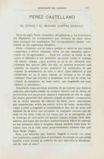 PÉREZ CASTELLANO - Banco de Seguros del Estado