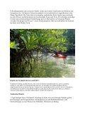 Seekajak-Camp an der Andamanen-See - Kanu, Sport, Outdoor ... - Seite 3