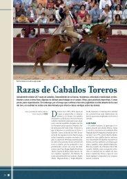 Toreo a caballo: Razas de caballos toreros - Las Ventas