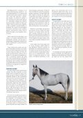 Toreo a caballo: Razas de caballos toreros - Las Ventas - Page 2