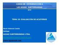 10-EVALUACIÓN DE ACUIFEROS.pdf - Aguas Subterráneas Ltda.