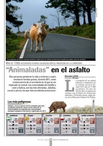 """""""Animaladas en el asfalto"""". Los animales causaron más e ... - Adecana"""