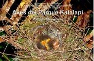 descripción de los datos - Parque Katalapi